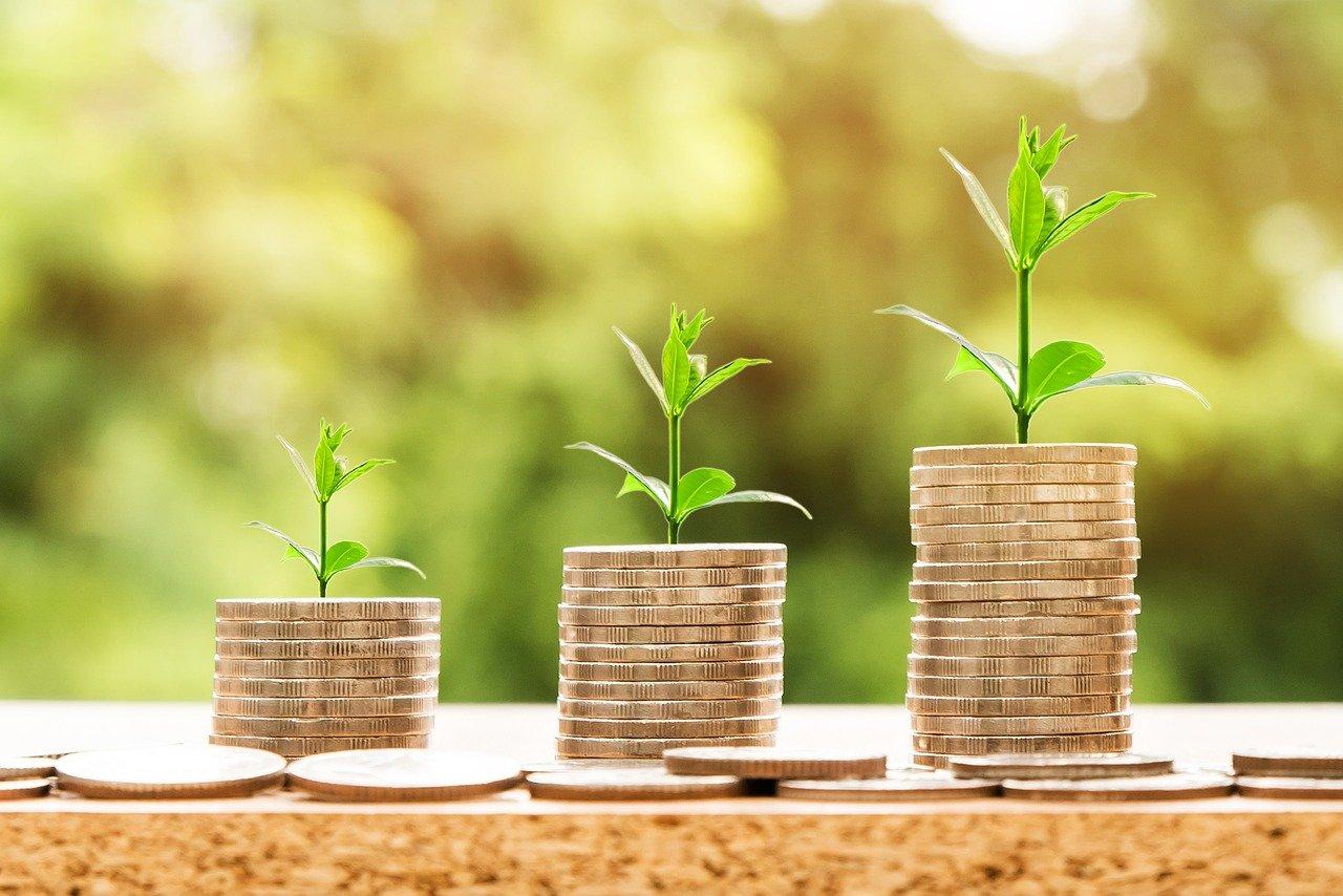 Geldstapel mit wachsenden Pflanzen